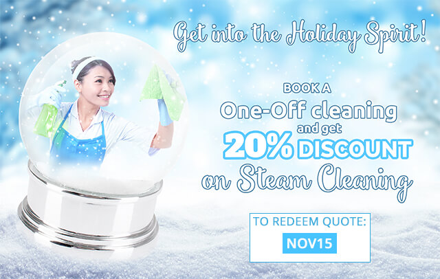 20% Discount on Combined Cleaning Services