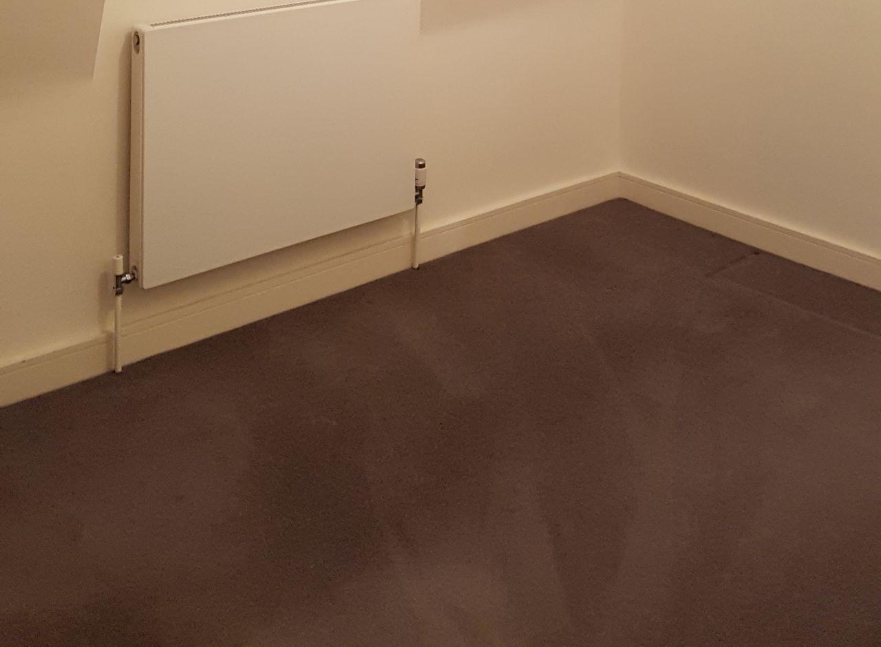 Harringay house cleaner N8