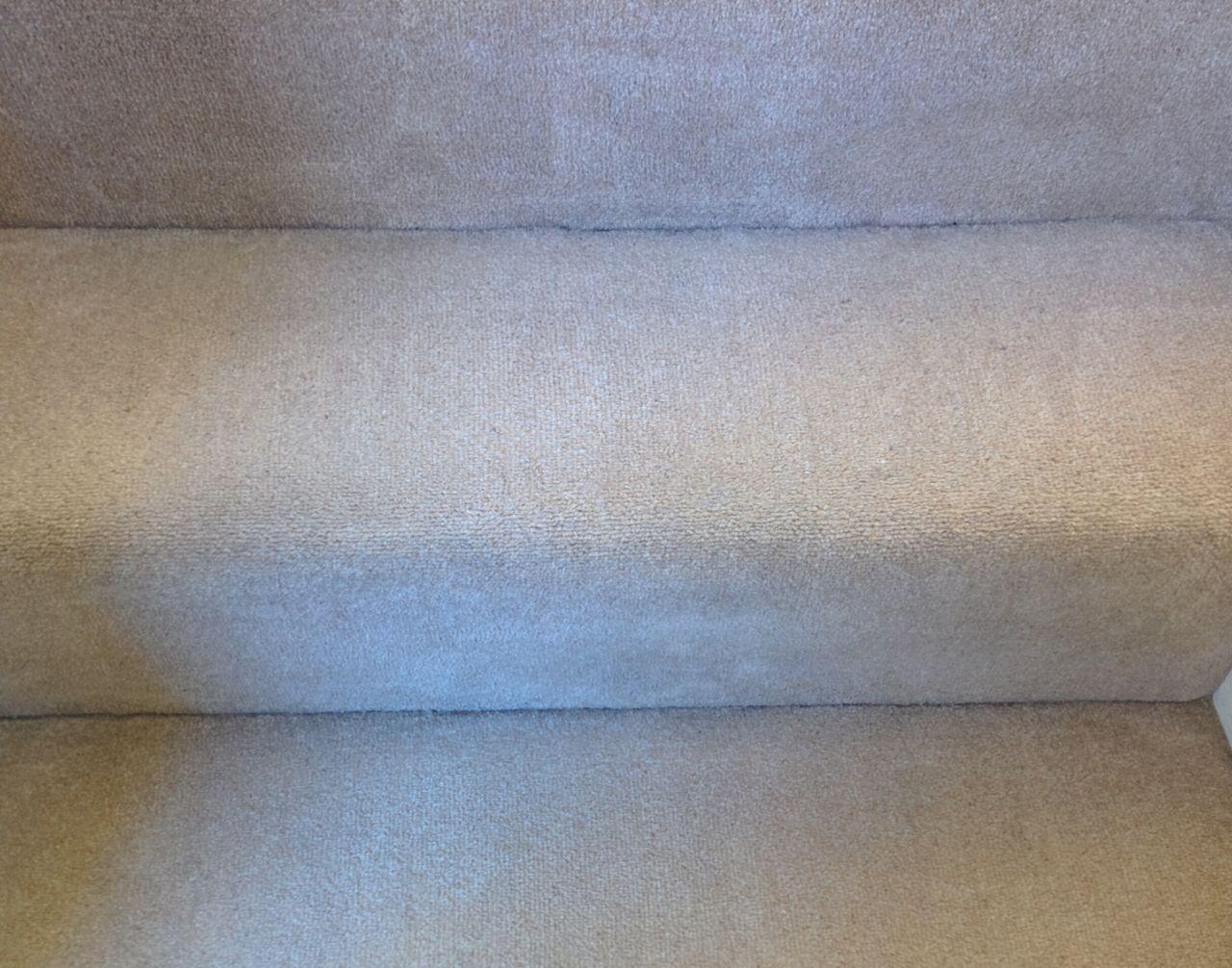 W8 carpet cleaners Kensington