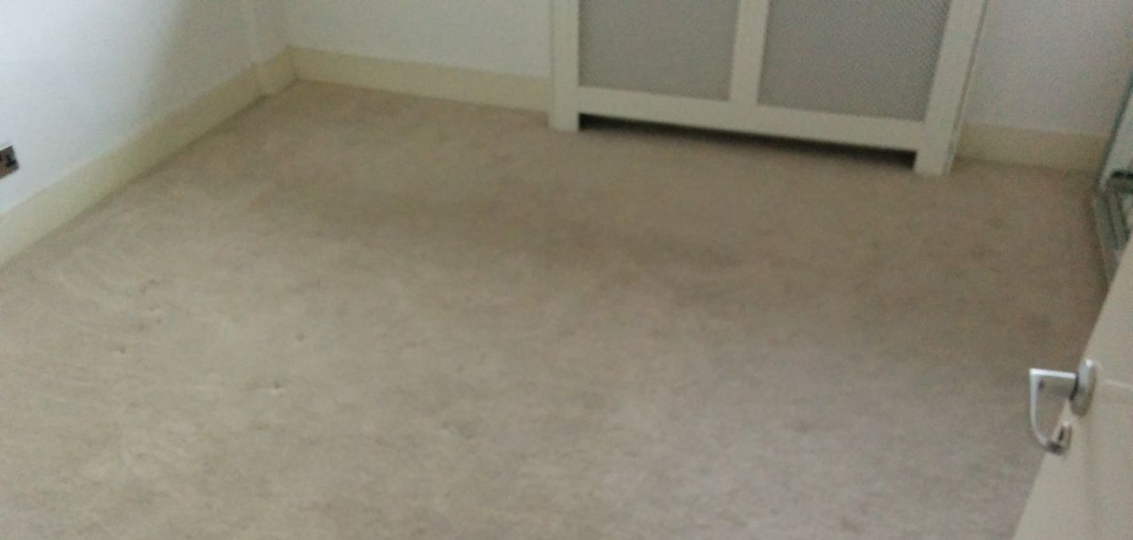 rugs cleaning Barnet