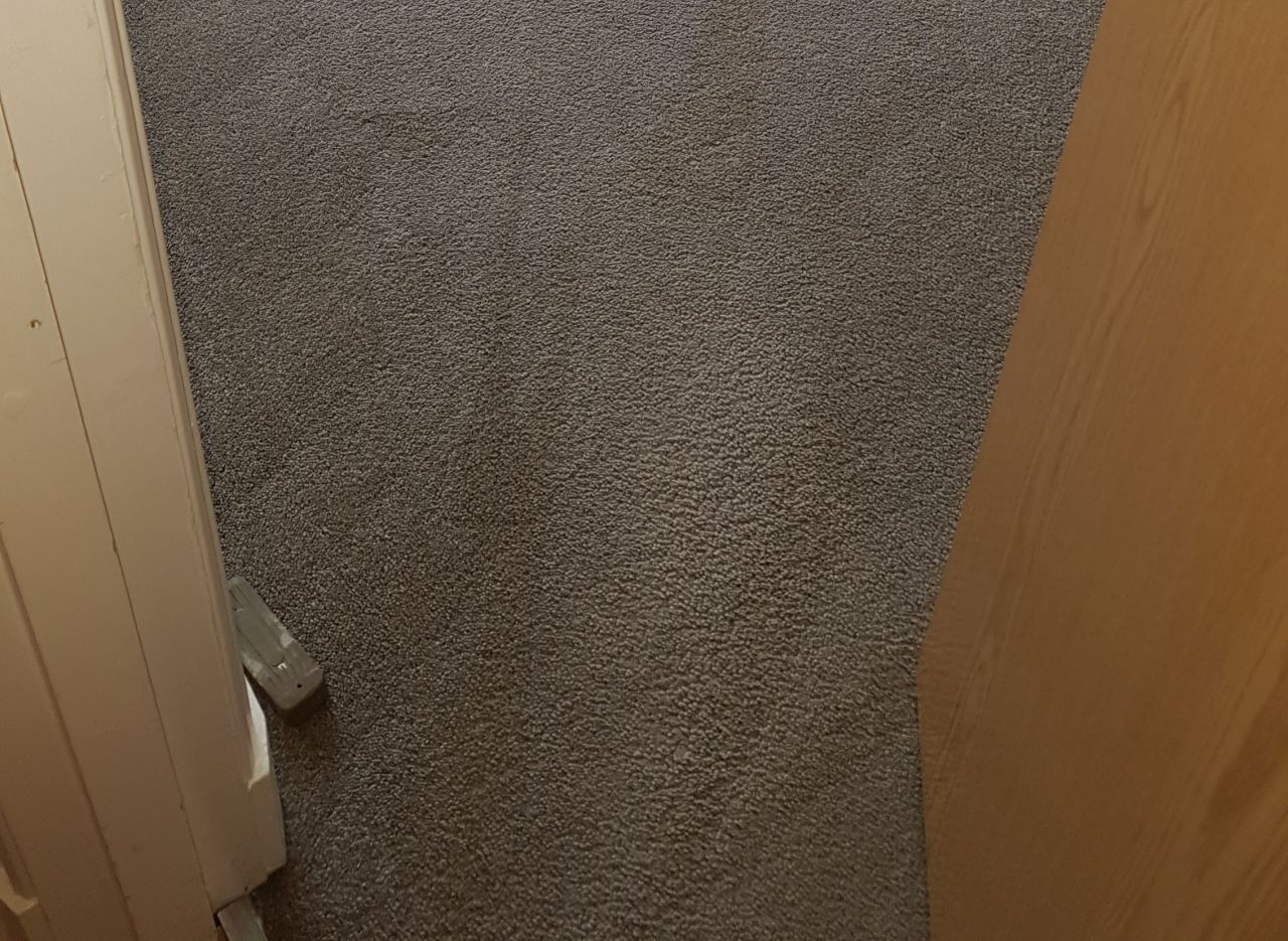 Clapham Park clean a carpet SW4
