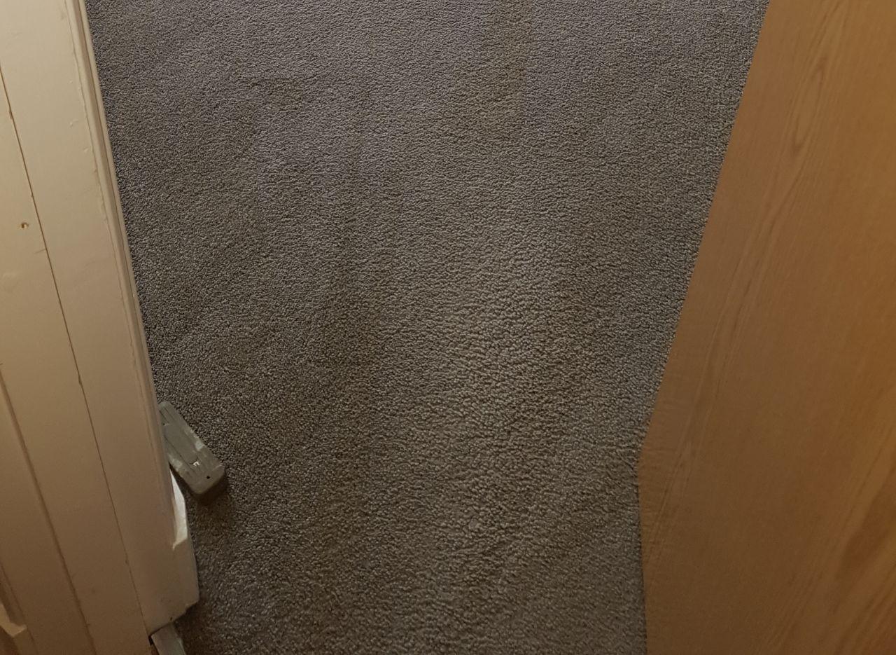 Clapham Park clean a carpet SW4
