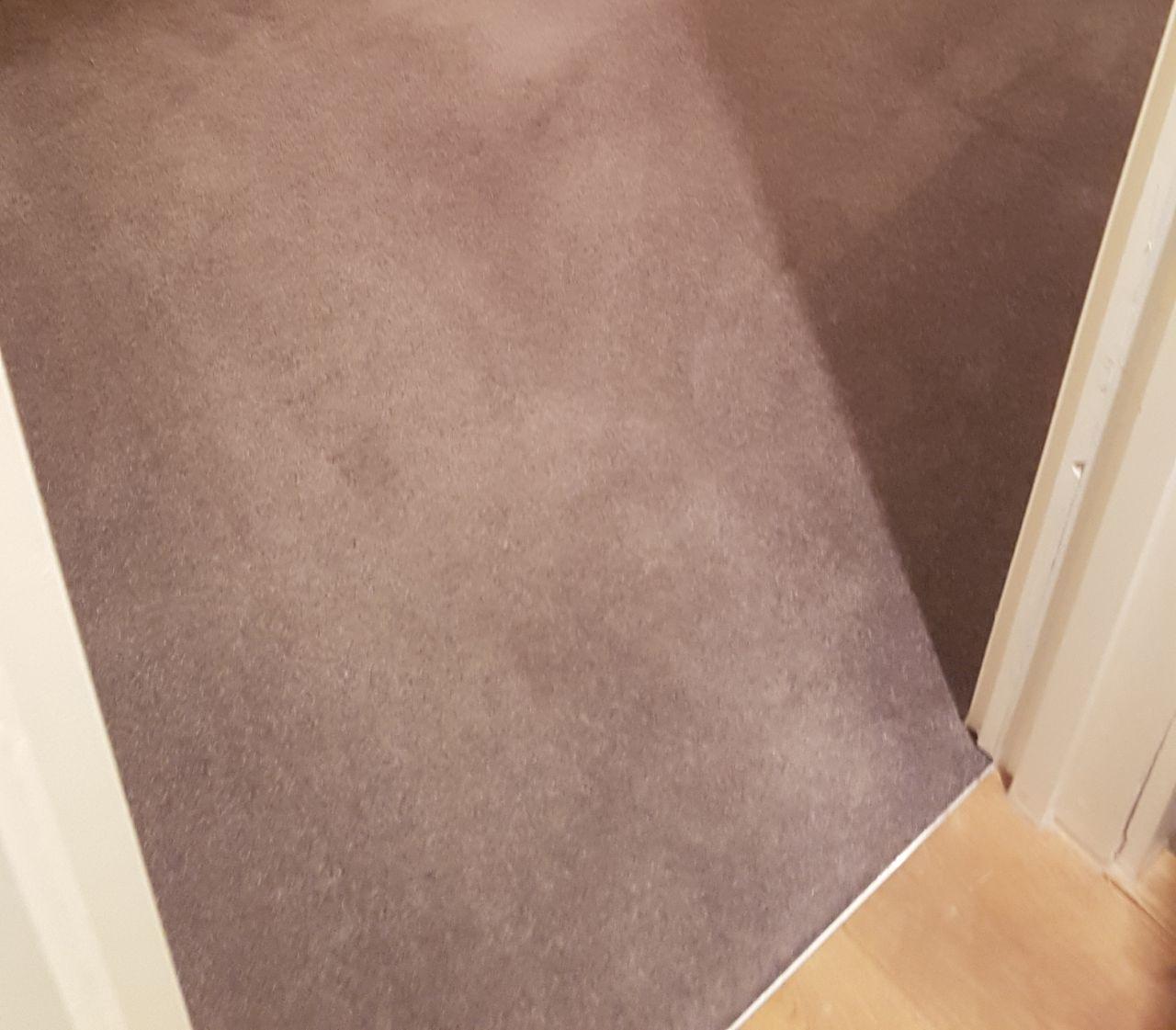 E9 cleaning floors Hackney