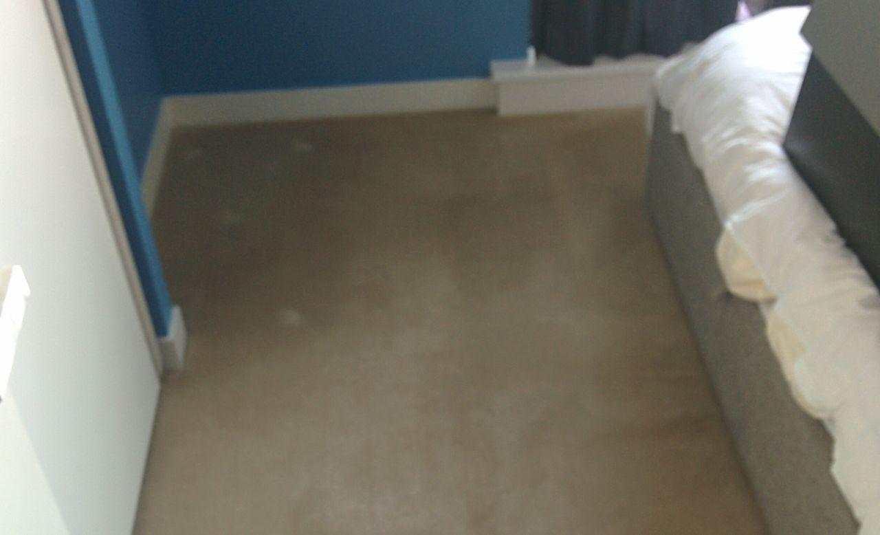 Islington carpet cleaner N1