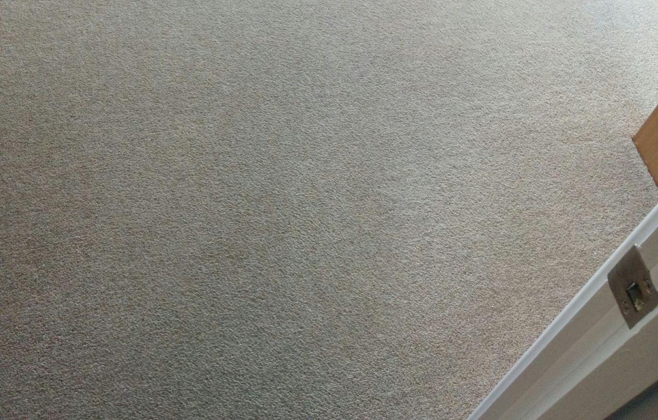 floor cleaners Islington