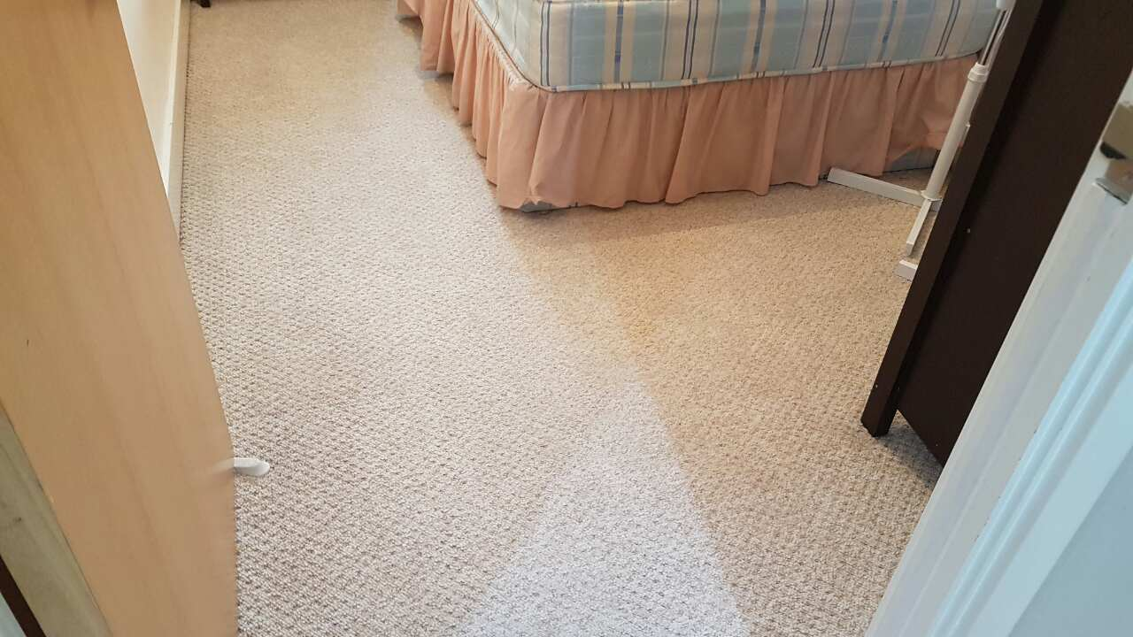 Kensington cleaning carpet SW7