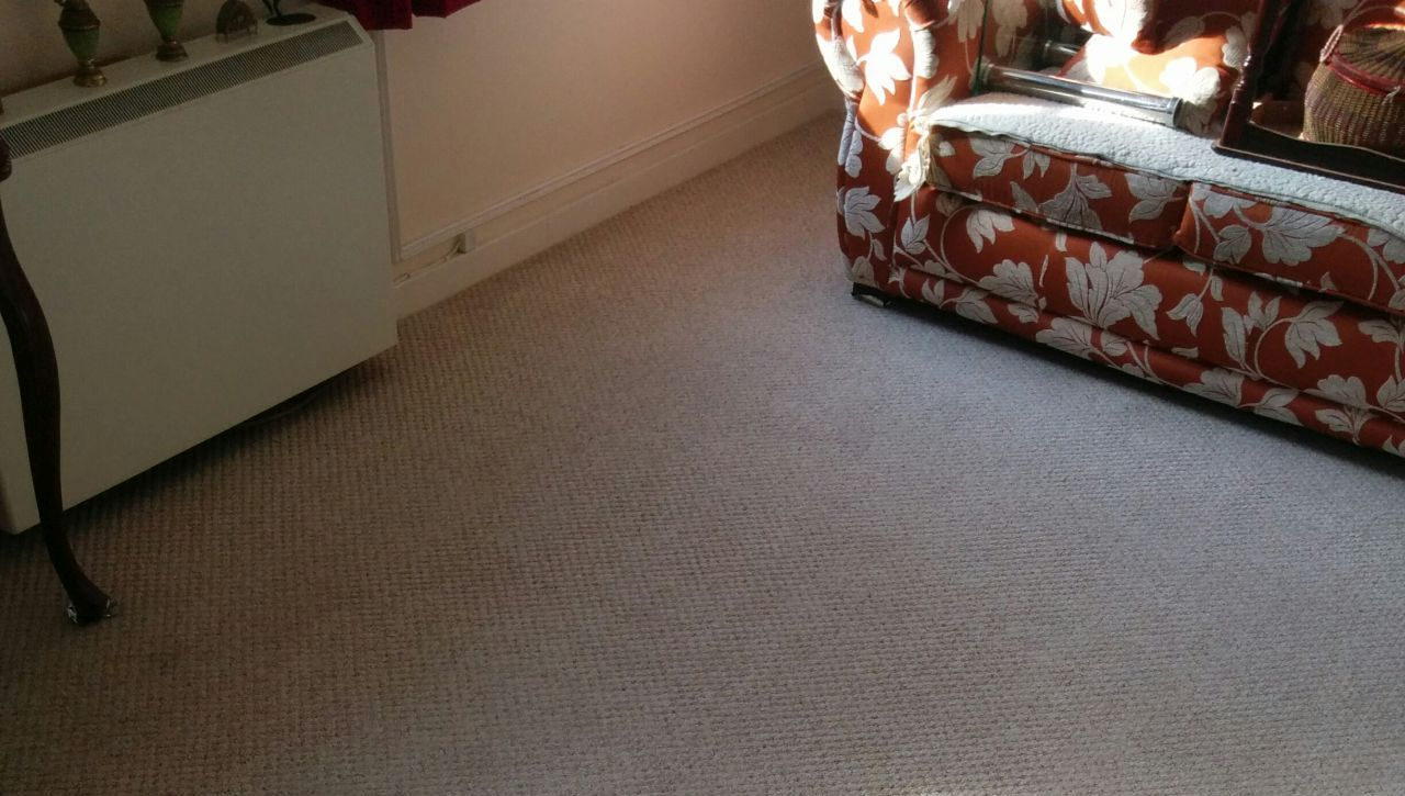 office carpet cleaning Pimlico