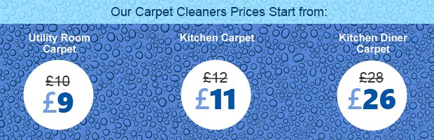 industrial carpet cleaning SW2