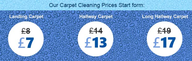 Barnet cleaning carpet EN5